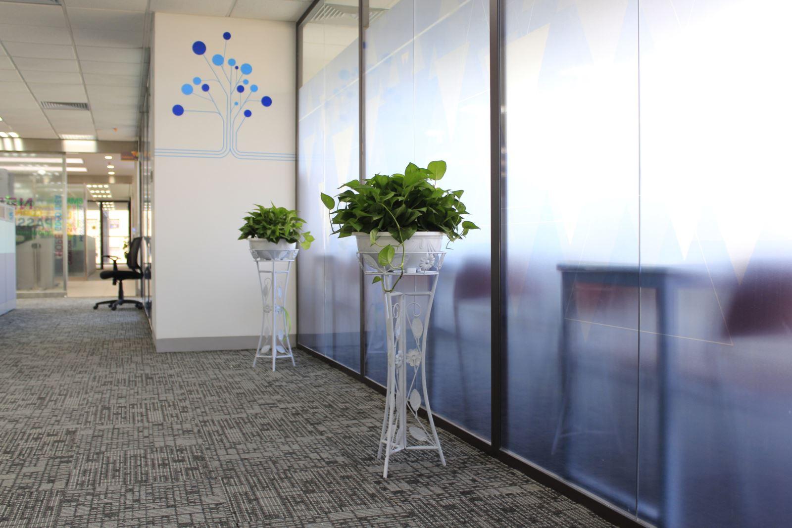 Cây xanh văn phòng tòa nhà PVI