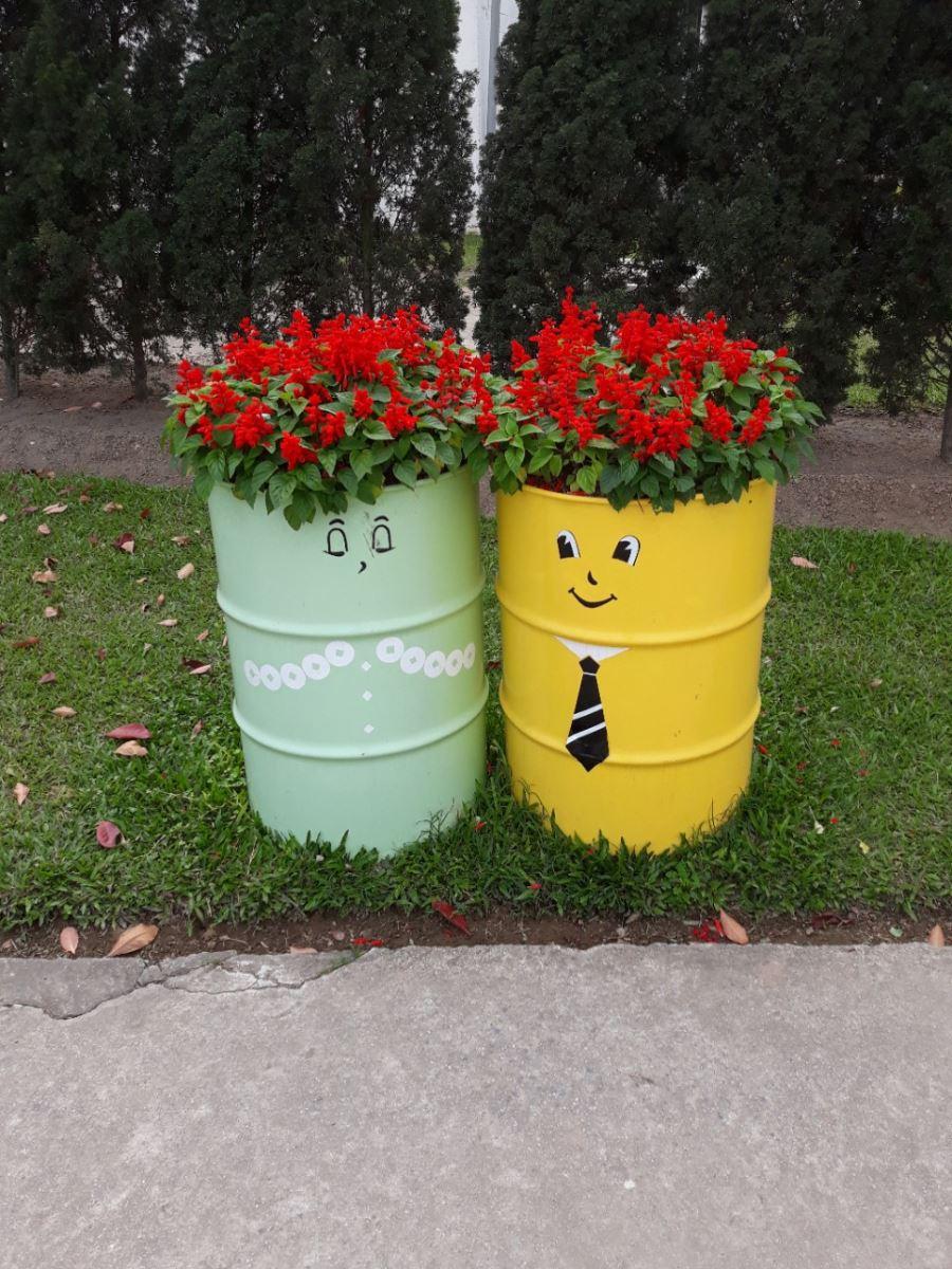 Kỹ thuật vệ sinh lá cây cảnh