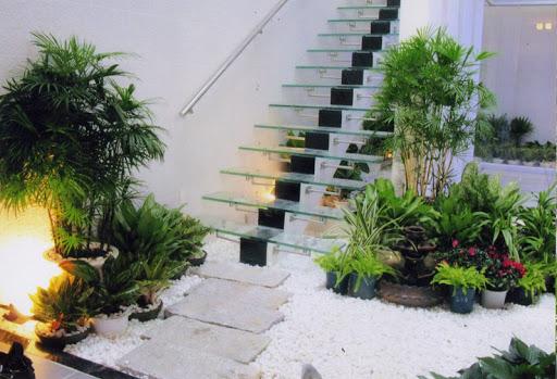 Những lợi ích của việc trồng cây xanh trong nhà