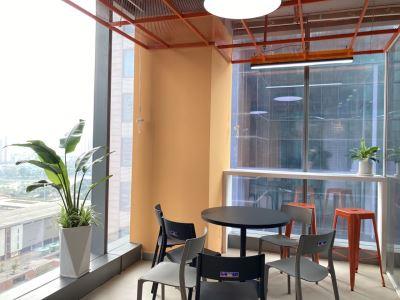 Các loại cây trang trí nội thất được quan niệm mang tới sự phát tài, phát lộc.