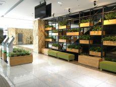 Không gian cây xanh tại Vietcombank