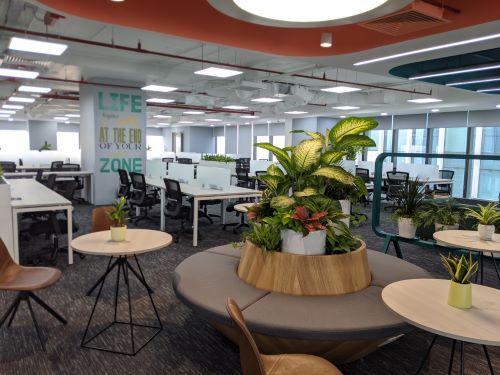 Không gian xanh văn phòng VNPay